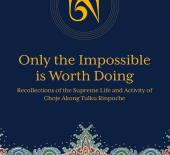 Only the Impossible book cover