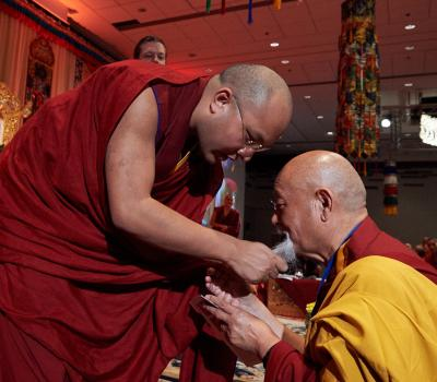karmapa and lama yeshe beard square
